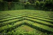 Giardino di Valsanzibio - Labirinto