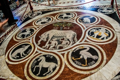 Siena - Pavimento Duomo