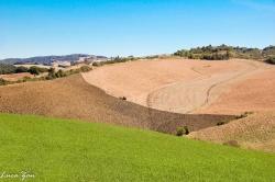 Paesaggio Toscana