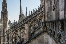 Milano-7303