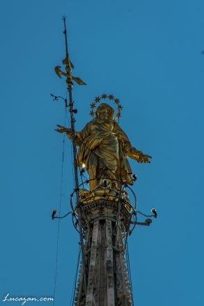 Milano-7312