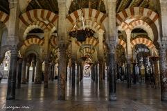 Catedral de Córdoba - Mezquita