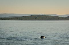 Isole Kornati