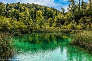 croazia-laghi-di-plitvice-9422-2