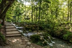 croazia-laghi-di-plitvice-9465-2